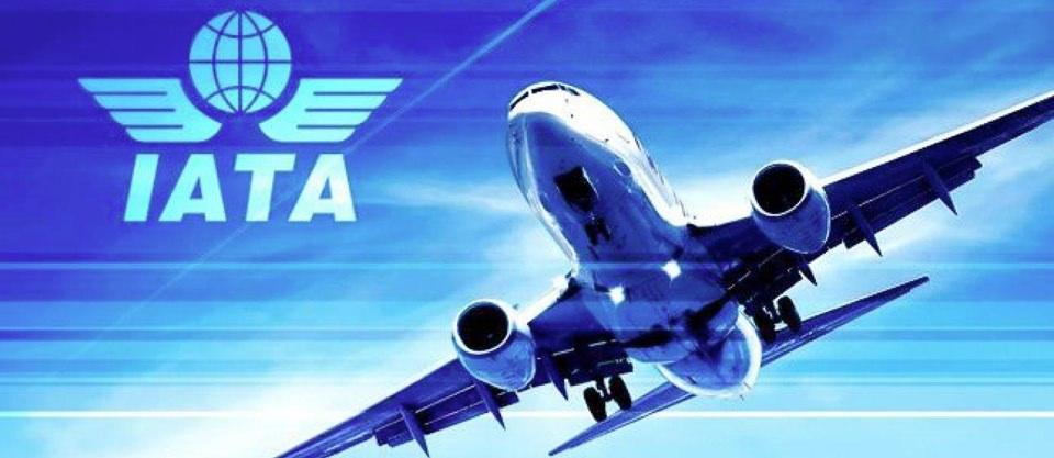 La IATA urge a los gobiernos la aplicacion del Plan Global de Seguridad